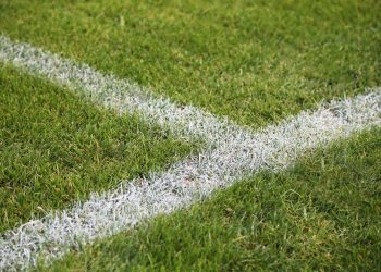 A closeup shot of painted white lines on a green soccer field in Germany